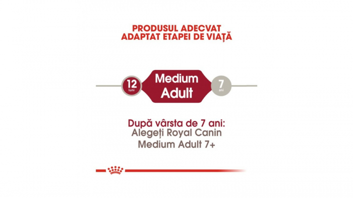 Royal Canin Medium Adult 4 Kg 3