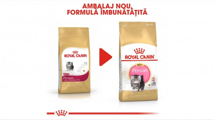 Royal Canin Persian Kitten hrana uscata pisica junior, 10 kg [5]