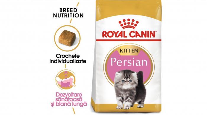 Royal Canin Persian Kitten hrana uscata pisica junior, 10 kg [0]