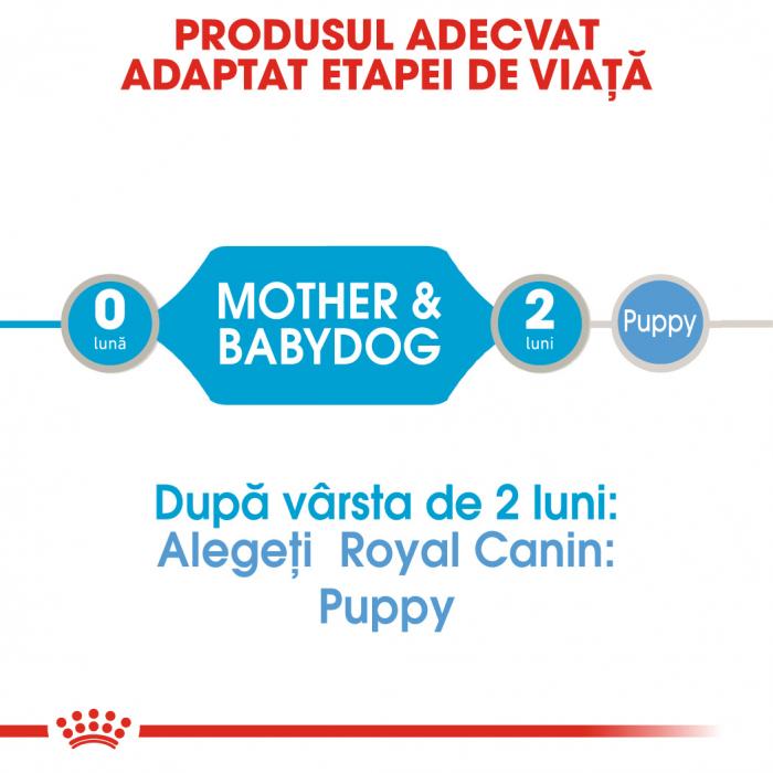 Royal Canin Starter Mousse, mama si puiul, hrana umeda caine, 195 g [4]