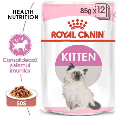 ROYAL CANIN Kitten Instinctive in Gravy Pouch, 12 plicuri x 85 g0