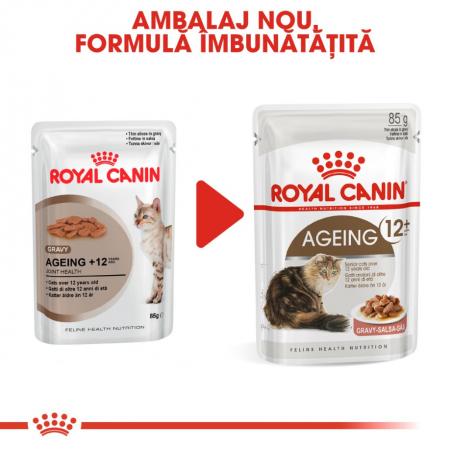 Royal Canin Feline Ageing +12, 12 plicuri x 85 g3
