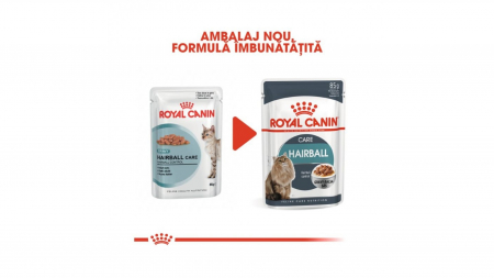 Royal Canin Hairball Care Gravy, 12 plicuri x 85 g2