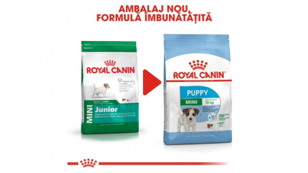 Royal Canin Mini Puppy 800 g1