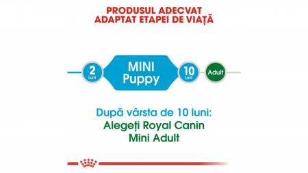 Royal Canin Mini Puppy 800 g2