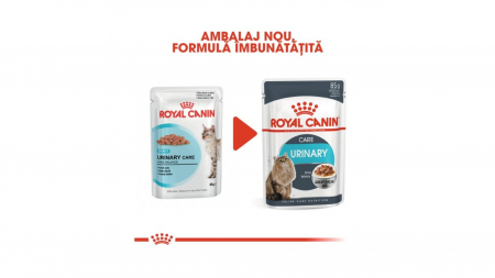 Royal Canin Urinary Care In Gravy, 1 x 85 g1