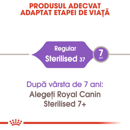 Royal Canin Feline Sterilised 37, 400 g3