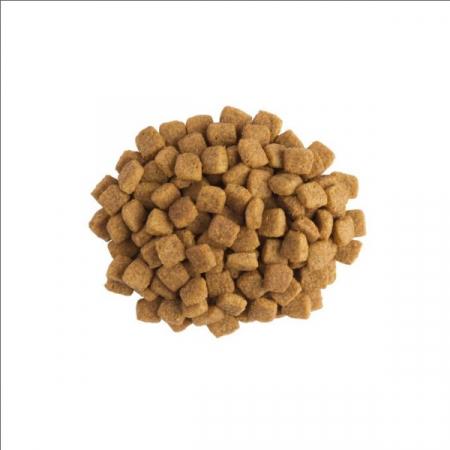 Purina UR St/Ox Cat - dieta pentru pisici cu probleme urinare - 5 kg1