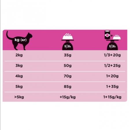 Purina UR St/Ox Cat - dieta pentru pisici cu probleme urinare - 5 kg2