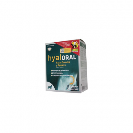 Hyaloral Large Breed 12 tablete/blister0