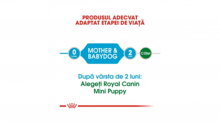 Royal Canin Mini Starter 3 kg2