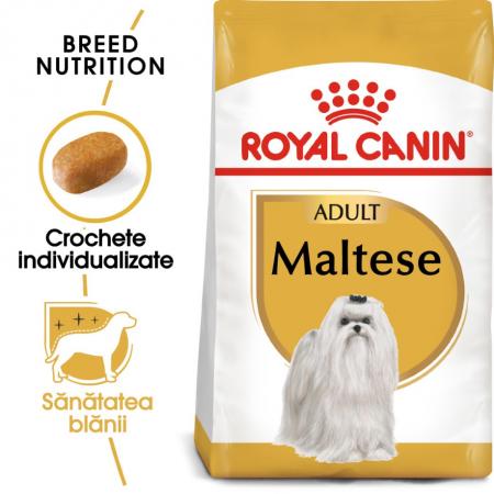 Royal Canin Bichon Maltese Adult, 1.5 kg0