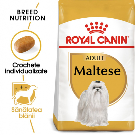 Royal Canin Bichon Maltese Adult, 500 g0