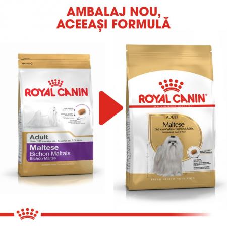 Royal Canin Bichon Maltese Adult, 1.5 kg1