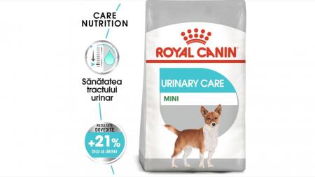 Hrana Royal Canin Mini Urinary Care, 1 Kg0