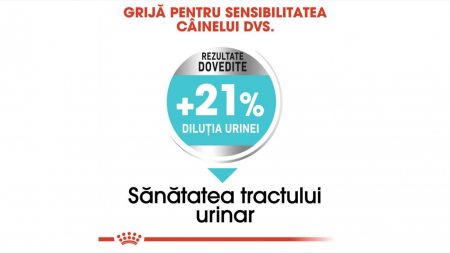 Hrana Royal Canin Mini Urinary Care, 8 Kg4