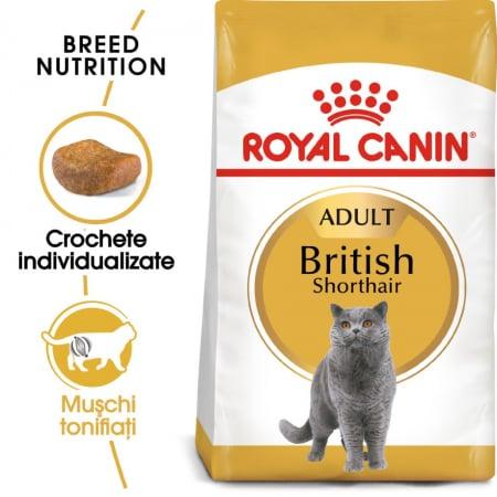 Royal Canin British Shorthair Adult, 2 kg [0]