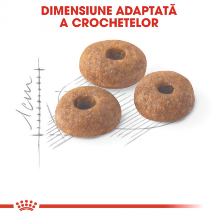 Royal Canin Fit 32, 400 g [3]