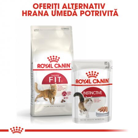 Royal Canin Fit 32, 4 kg [5]
