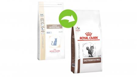 Royal Canin Gastro Intestinal Cat 400 g1