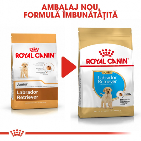 Royal Canin Labrador Retriever Puppy 1 Kg1