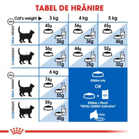 Royal Canin Indoor, 10 kg [4]