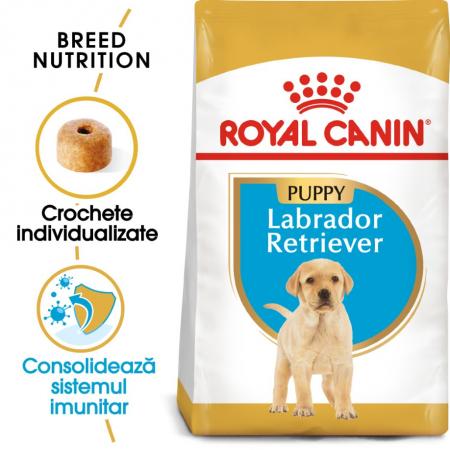 Royal Canin Labrador Retriever Puppy 12 Kg0
