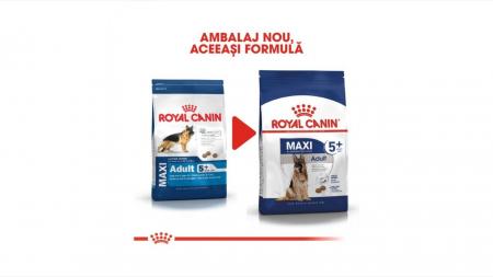Royal Canin Maxi Adult (5+), 15 Kg4