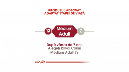 Royal Canin Medium Adult 4 Kg3