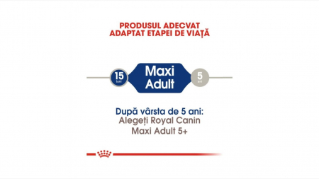 Royal Canin Maxi Adult 15 Kg1