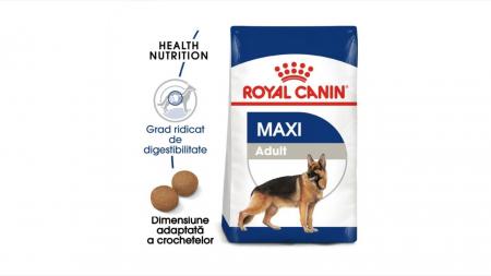 Royal Canin Maxi Adult 4 Kg0