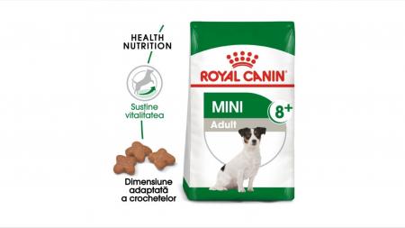 Royal Canin Mini Adult (+8), hrana uscata caini - 8 Kg [0]