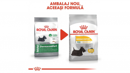 Royal Canin Mini Dermacomfort, 8 kg1