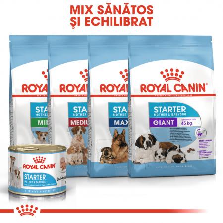 Royal Canin Starter Mousse, mama si puiul, hrana umeda caine, 195 g [5]