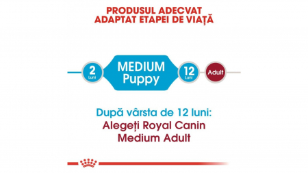 Royal Canin Medium Puppy 4 kg5