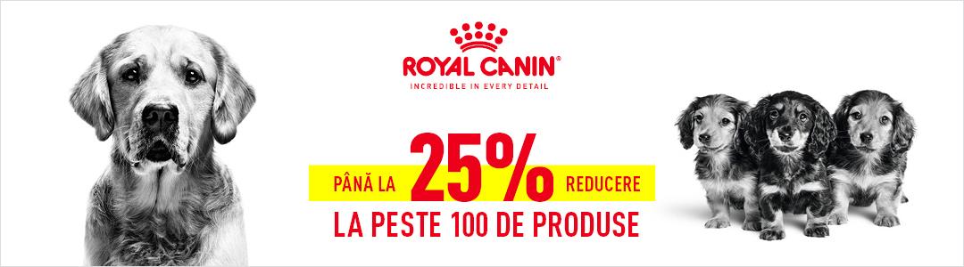 Oferte Royal - Caini