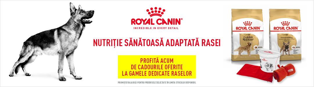 Cadouri Royal Canin - Caini