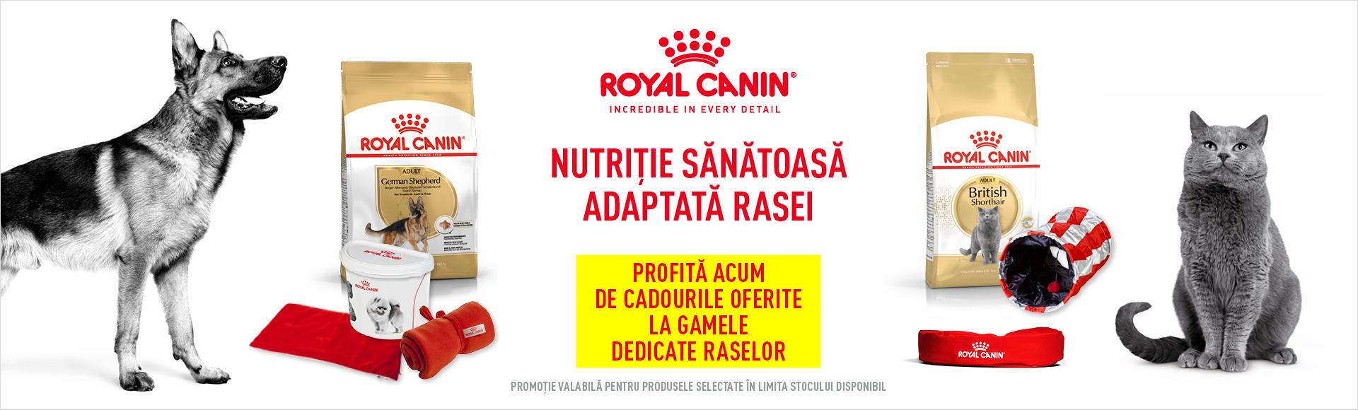 Cadouri Royal Canin