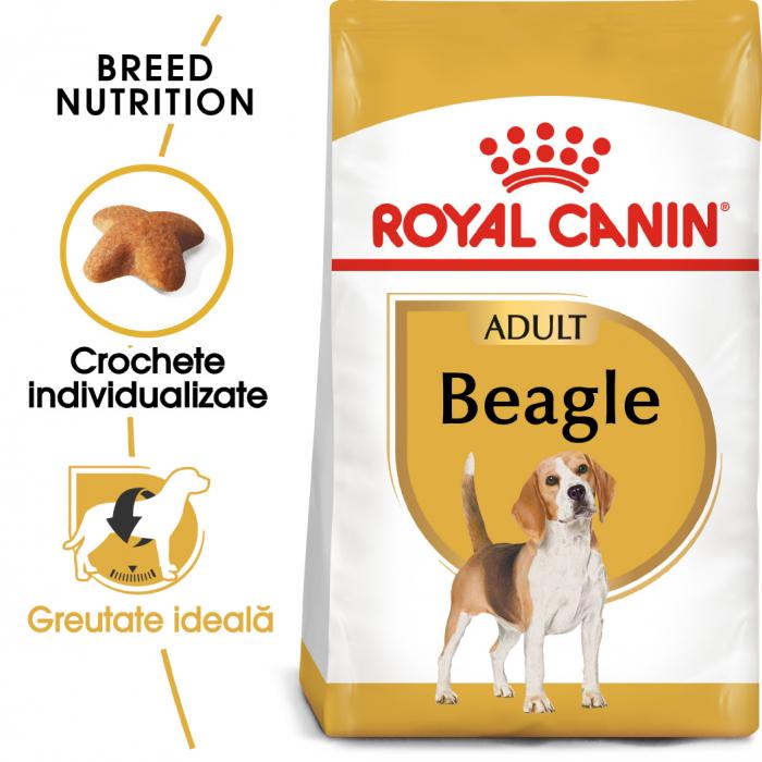 Royal Canin Beagle Adult hrana uscata pentru caini 3 kg 0