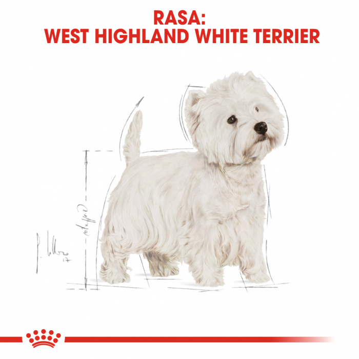 ROYAL CANIN Westie Adult 3 kg 0
