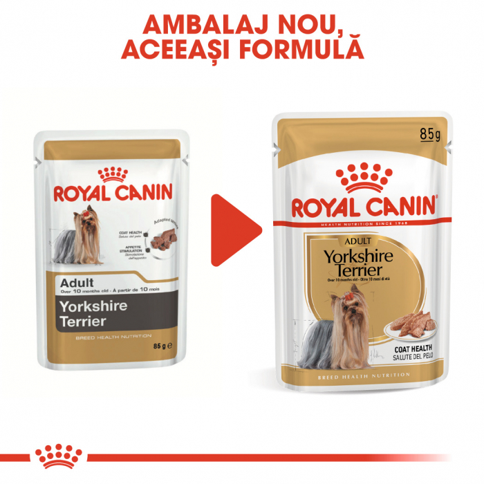 ROYAL CANIN Yorkshire Terrier hrana umeda 12x85g 4
