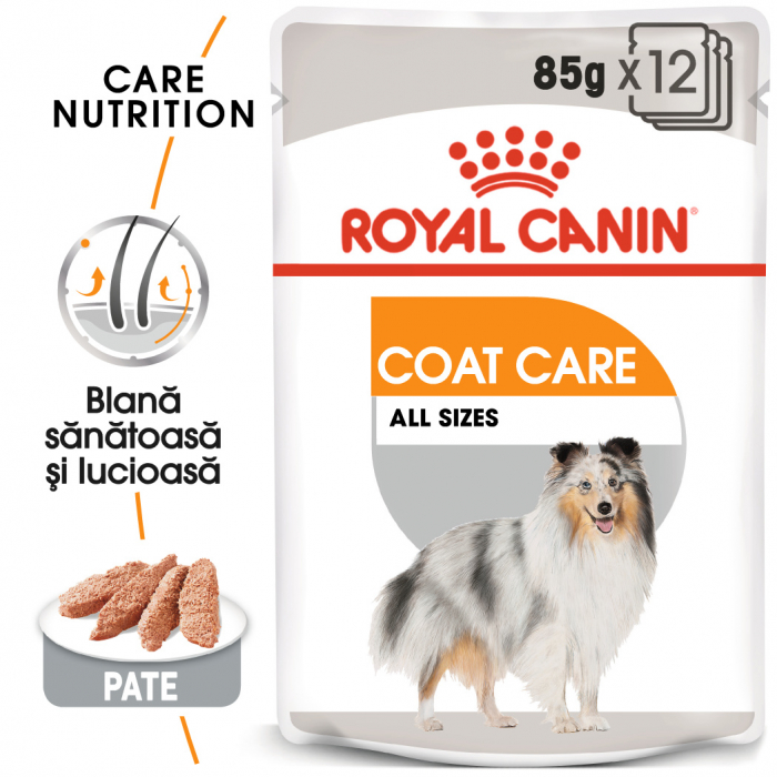 ROYAL CANIN Coat Care hrana umeda 12x85g 0