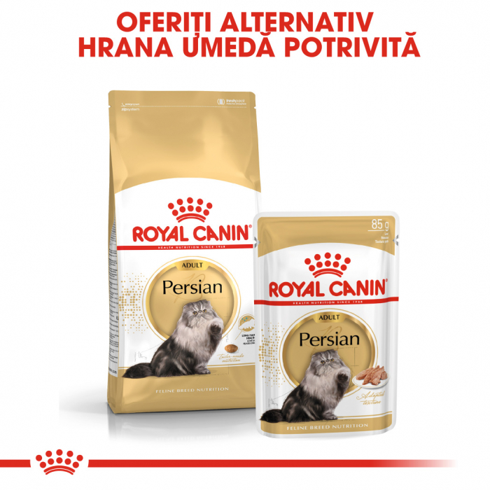 ROYAL CANIN Persian Adult 10 kg 6