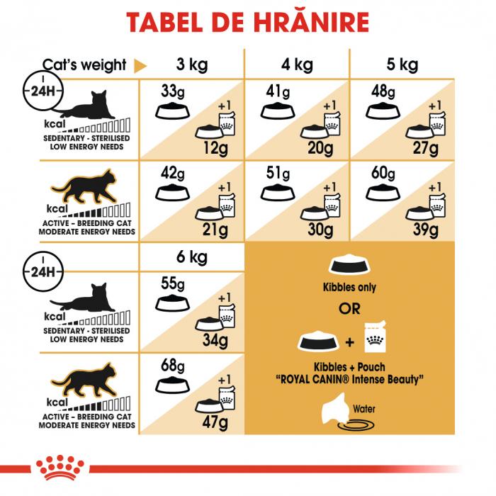 Royal Canin Siamese hrana uscata pentru pisici 2 kg 5