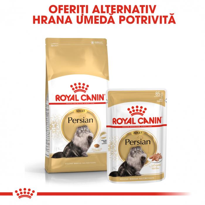Royal Canin Persian hrana umeda pate pentru pisici 12*85g 4