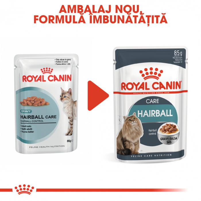 ROYAL CANIN Hairball Care hrana umeda in sos 12x85g 1