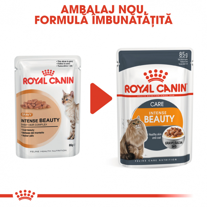ROYAL CANIN Intense Beauty hrana umeda in sos 12x85g 1