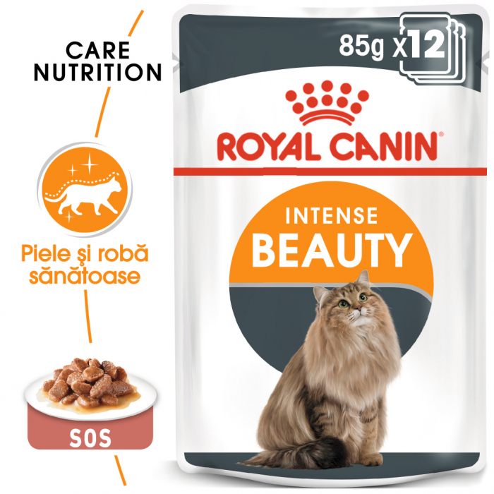 ROYAL CANIN Intense Beauty hrana umeda in sos 12x85g 0