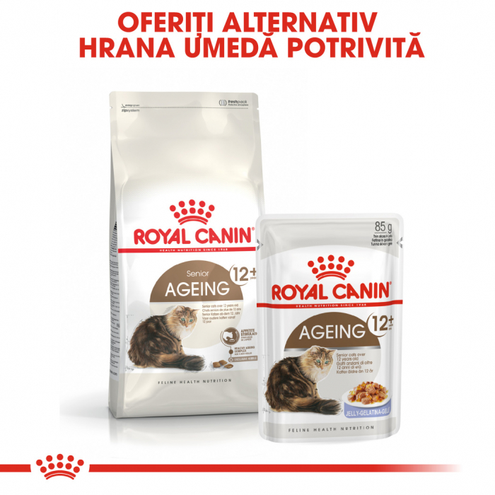 ROYAL CANIN Ageing 12+, 4 kg 7
