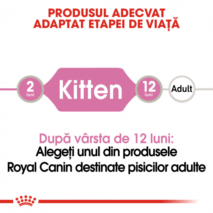ROYAL CANIN Kitten hrana umeda pate 12x85g 1